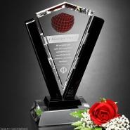 conquest-award-10-6746 - Copy